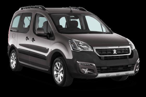 <h4>Peugeot Partner</h4>
